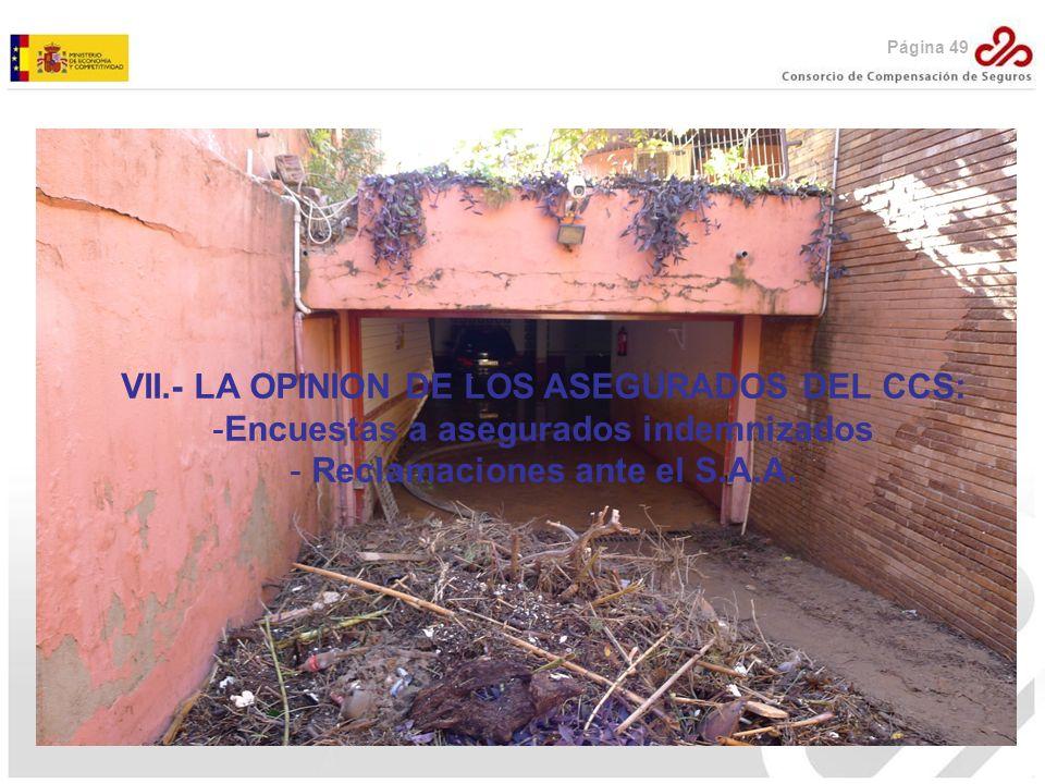 VII.- LA OPINION DE LOS ASEGURADOS DEL CCS: