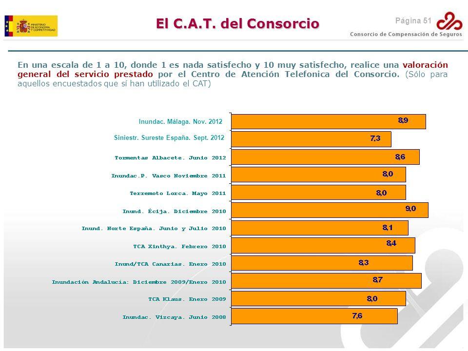 El C.A.T. del Consorcio Página 51