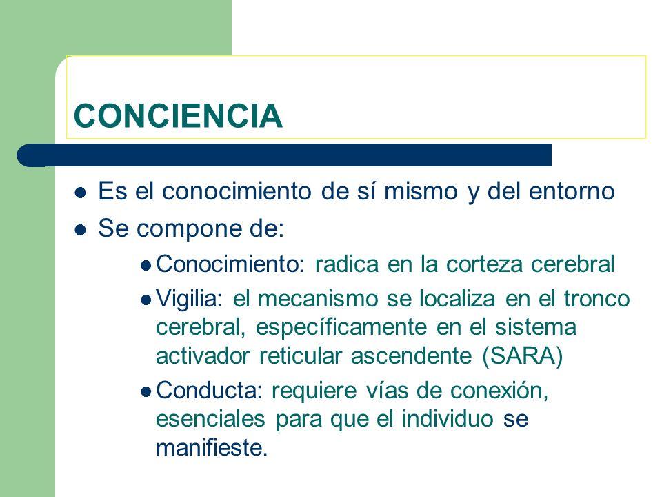 CONCIENCIA Es el conocimiento de sí mismo y del entorno Se compone de: