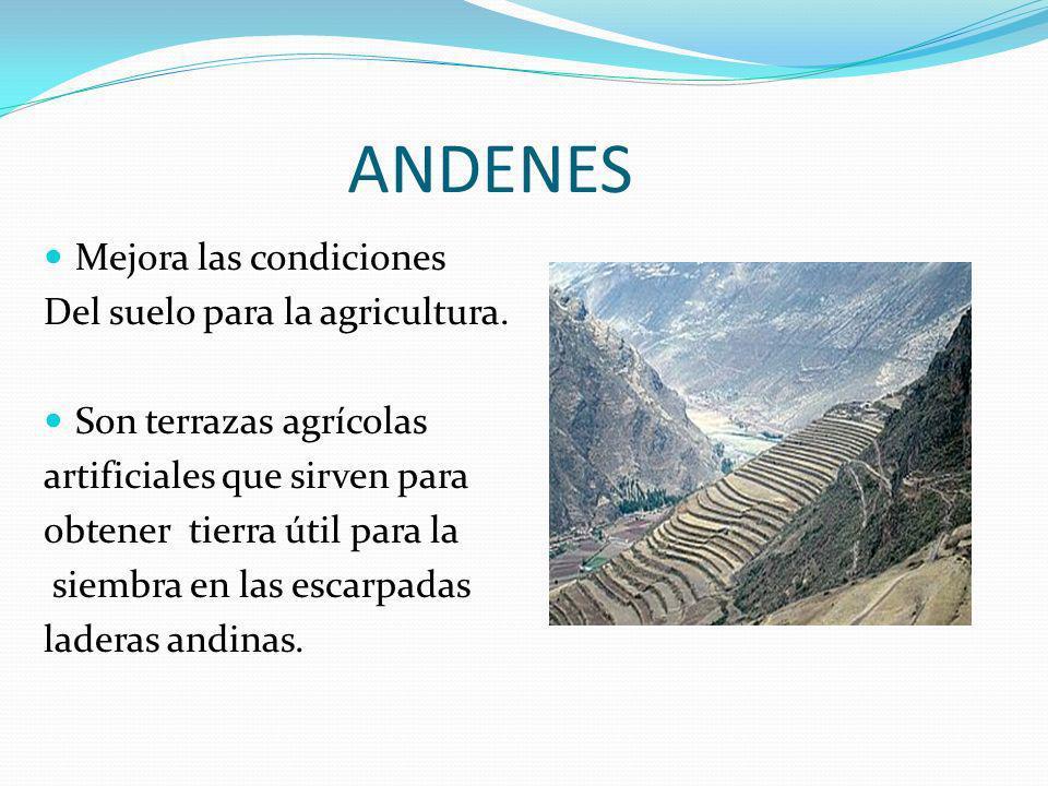 ANDENES Mejora las condiciones Del suelo para la agricultura.