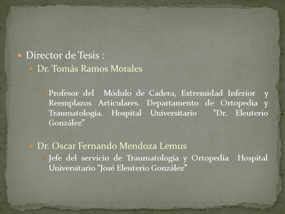 Director de Tesis : Dr. Tomás Ramos Morales