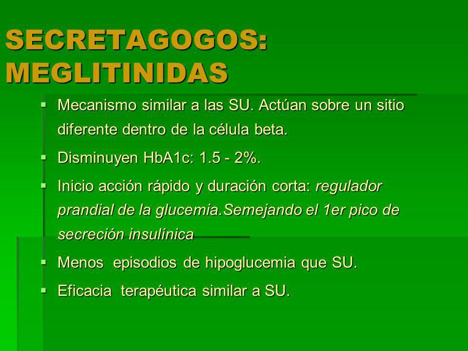 SECRETAGOGOS: MEGLITINIDAS