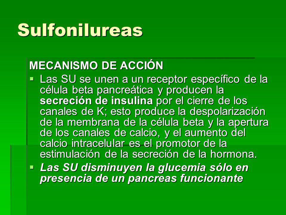 Sulfonilureas MECANISMO DE ACCIÓN