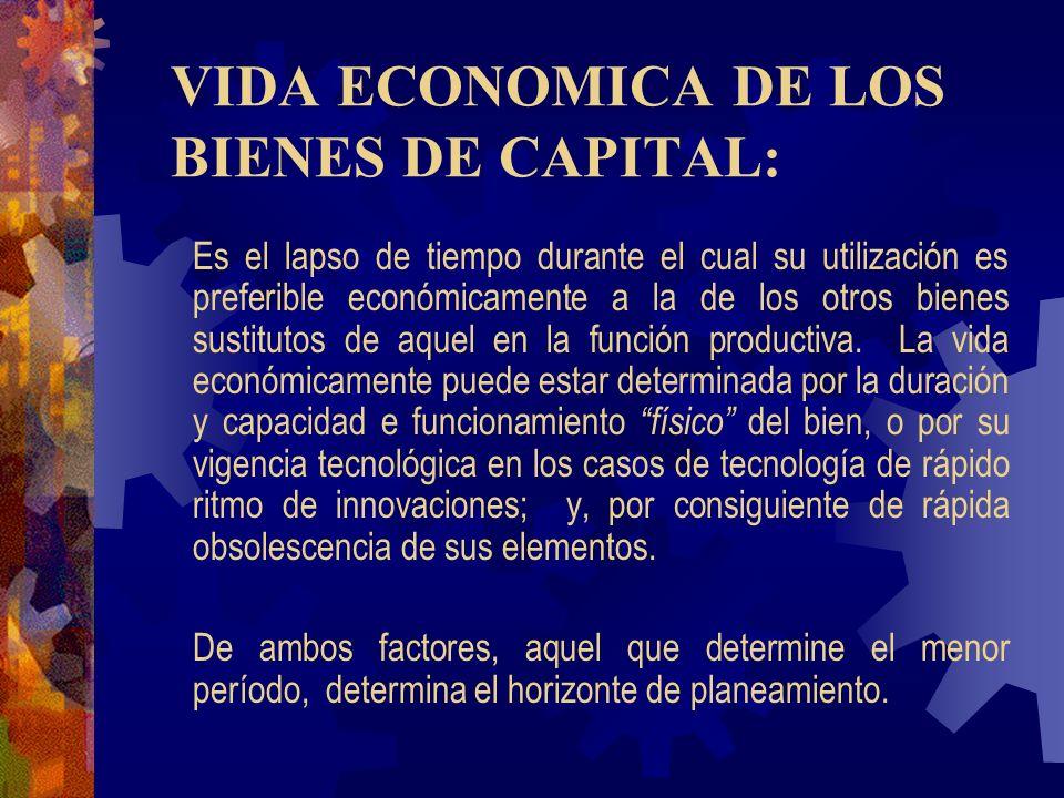 VIDA ECONOMICA DE LOS BIENES DE CAPITAL: