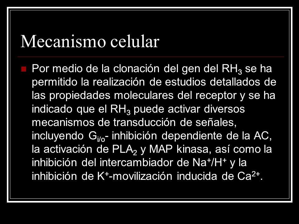 Mecanismo celular