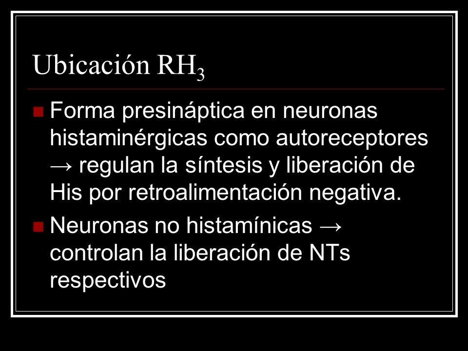 Ubicación RH3