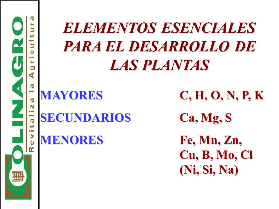 ELEMENTOS ESENCIALES PARA EL DESARROLLO DE LAS PLANTAS