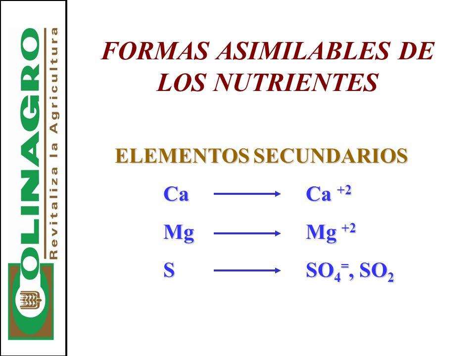 FORMAS ASIMILABLES DE LOS NUTRIENTES
