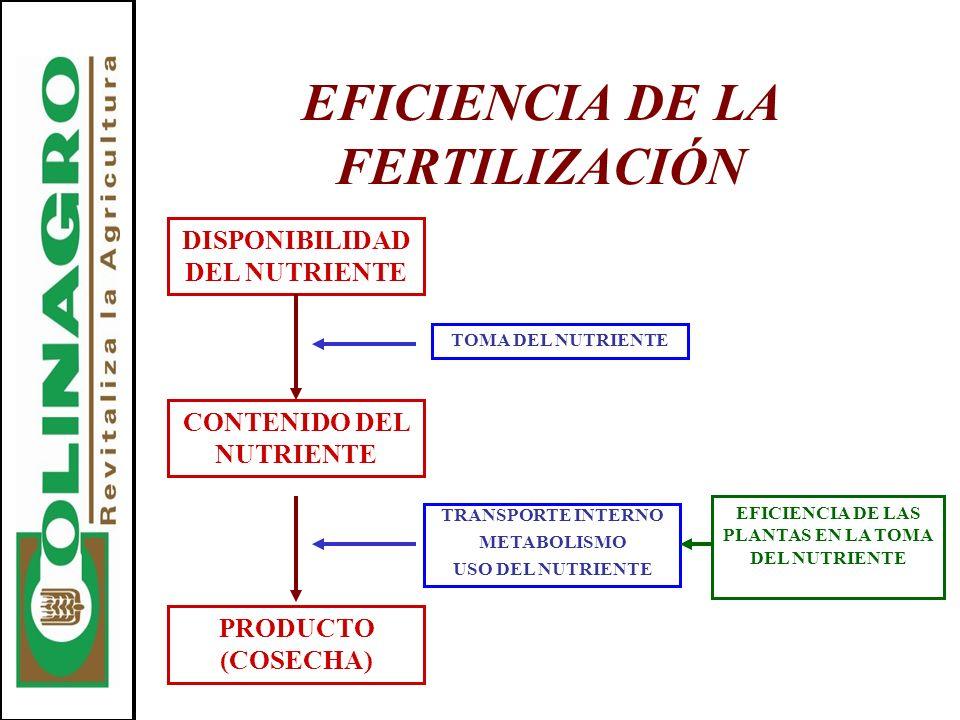 EFICIENCIA DE LA FERTILIZACIÓN