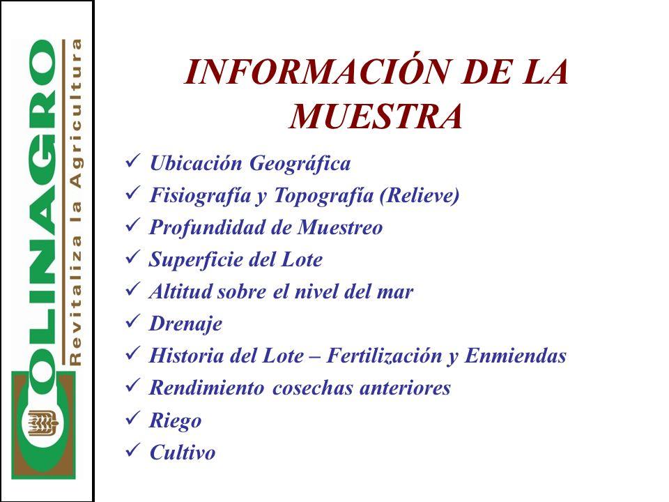 INFORMACIÓN DE LA MUESTRA