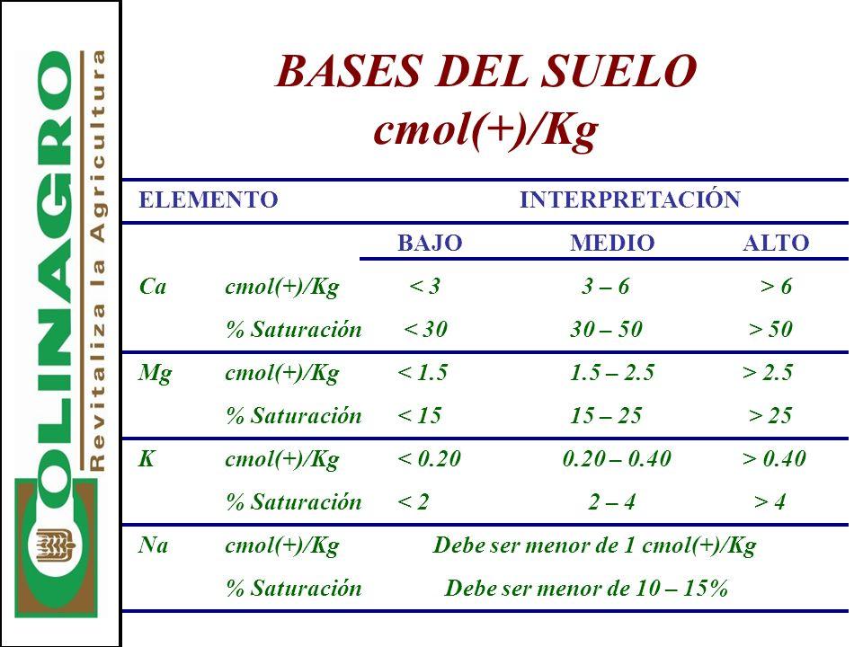BASES DEL SUELO cmol(+)/Kg