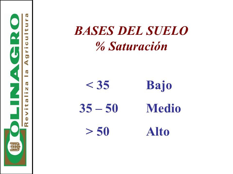 BASES DEL SUELO % Saturación