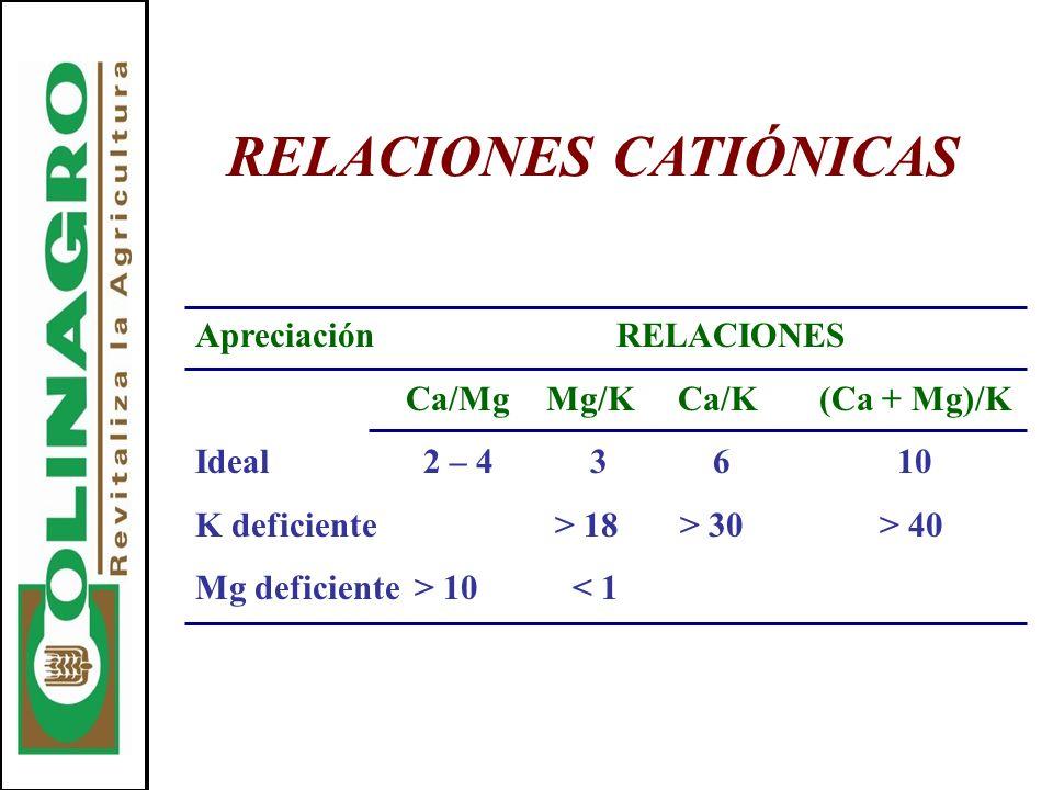 RELACIONES CATIÓNICAS