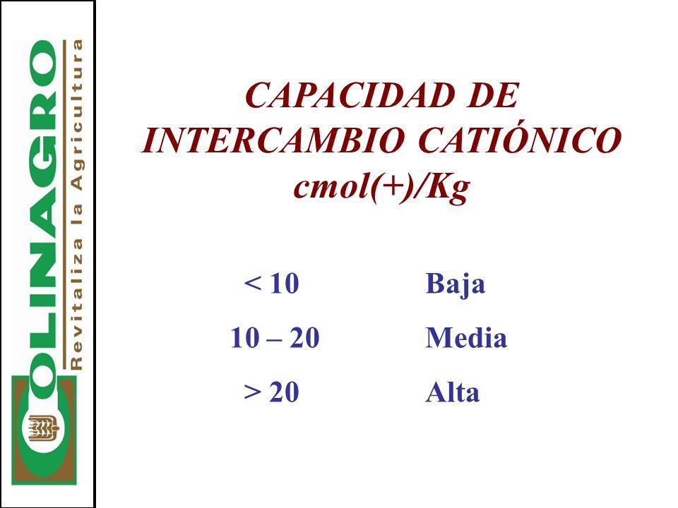 CAPACIDAD DE INTERCAMBIO CATIÓNICO cmol(+)/Kg