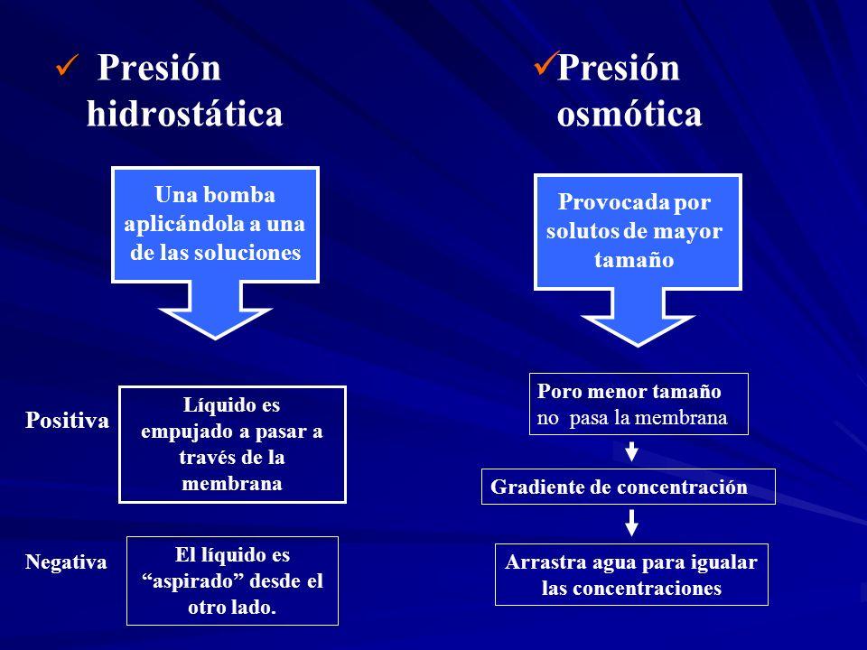 Presión hidrostática Presión osmótica Una bomba aplicándola a una