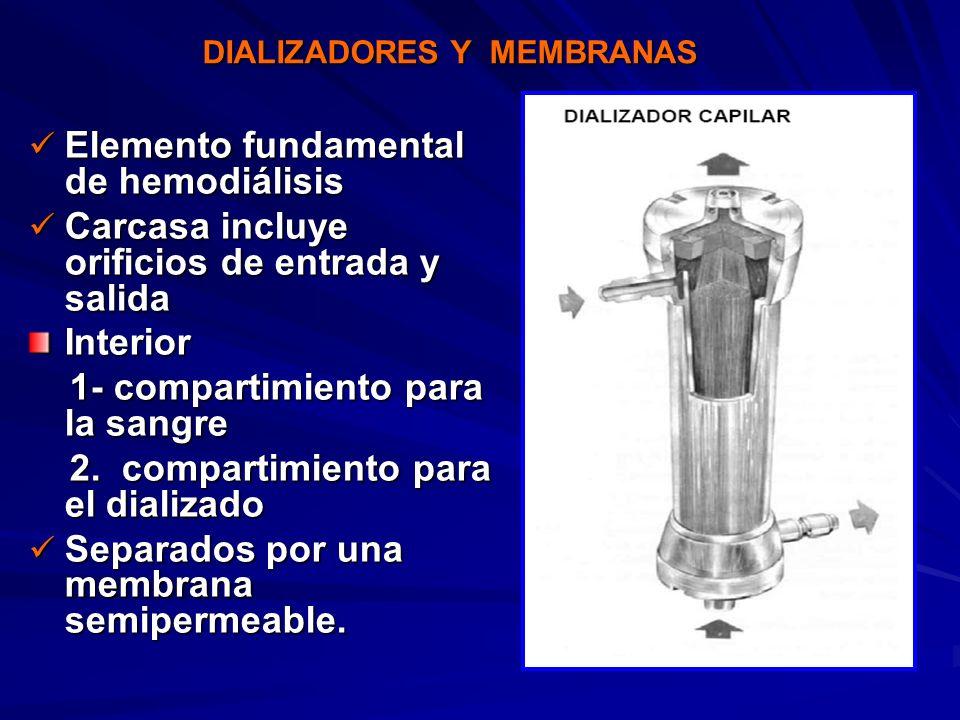 Elemento fundamental de hemodiálisis