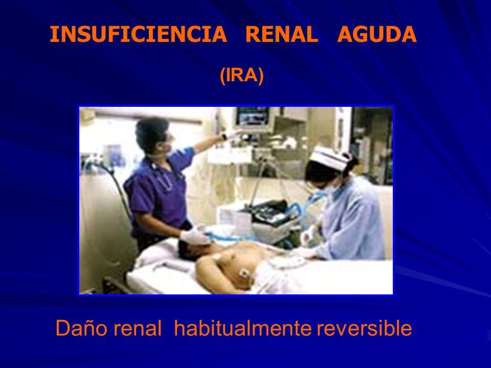 Daño renal habitualmente reversible