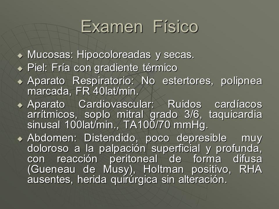 Examen Físico Mucosas: Hipocoloreadas y secas.