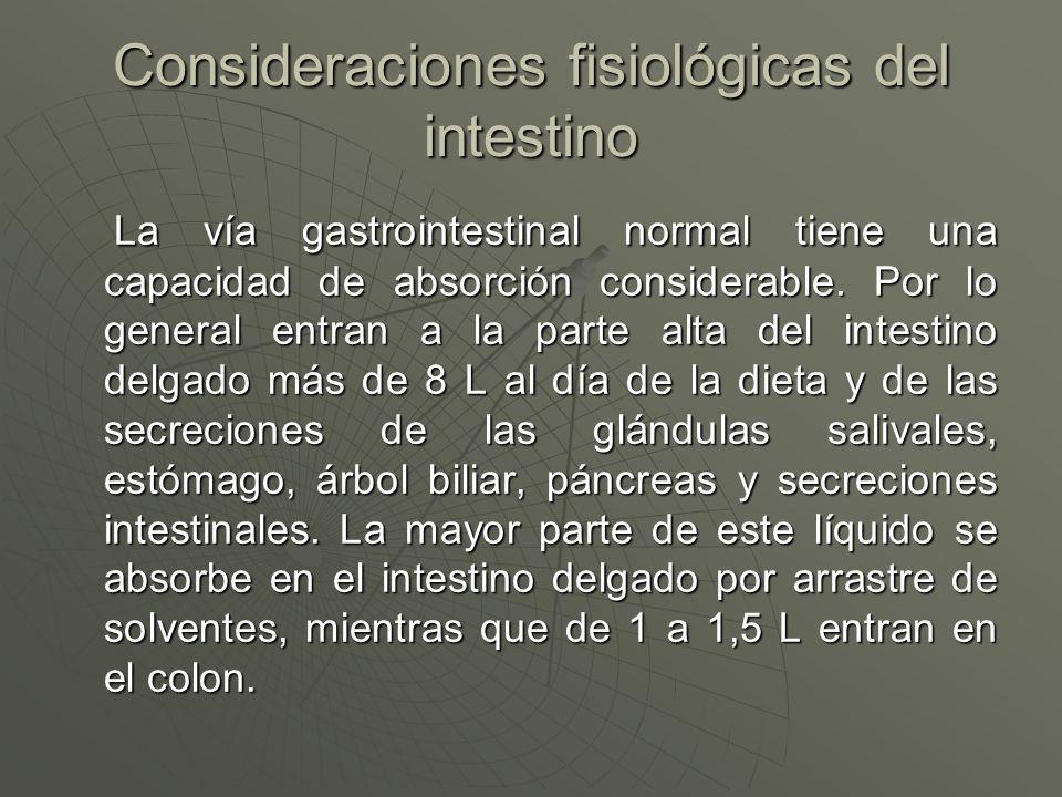 Consideraciones fisiológicas del intestino