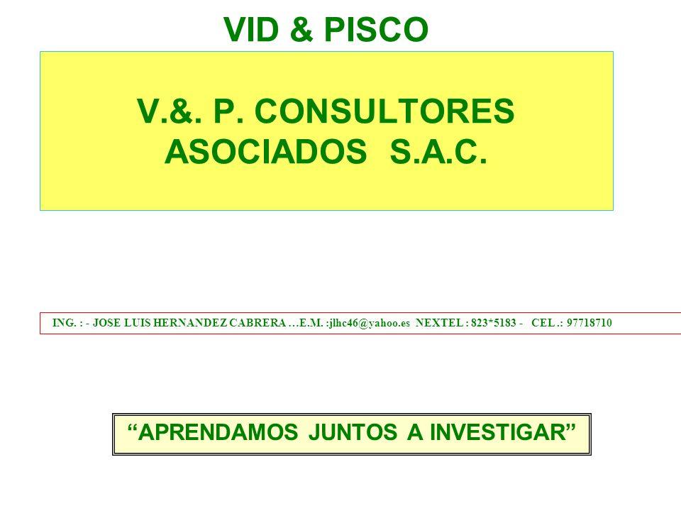 VID & PISCO V.&. P. CONSULTORES ASOCIADOS S.A.C.