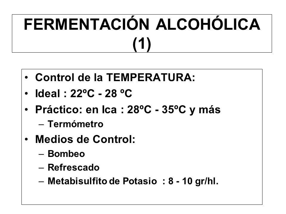 FERMENTACIÓN ALCOHÓLICA (1)