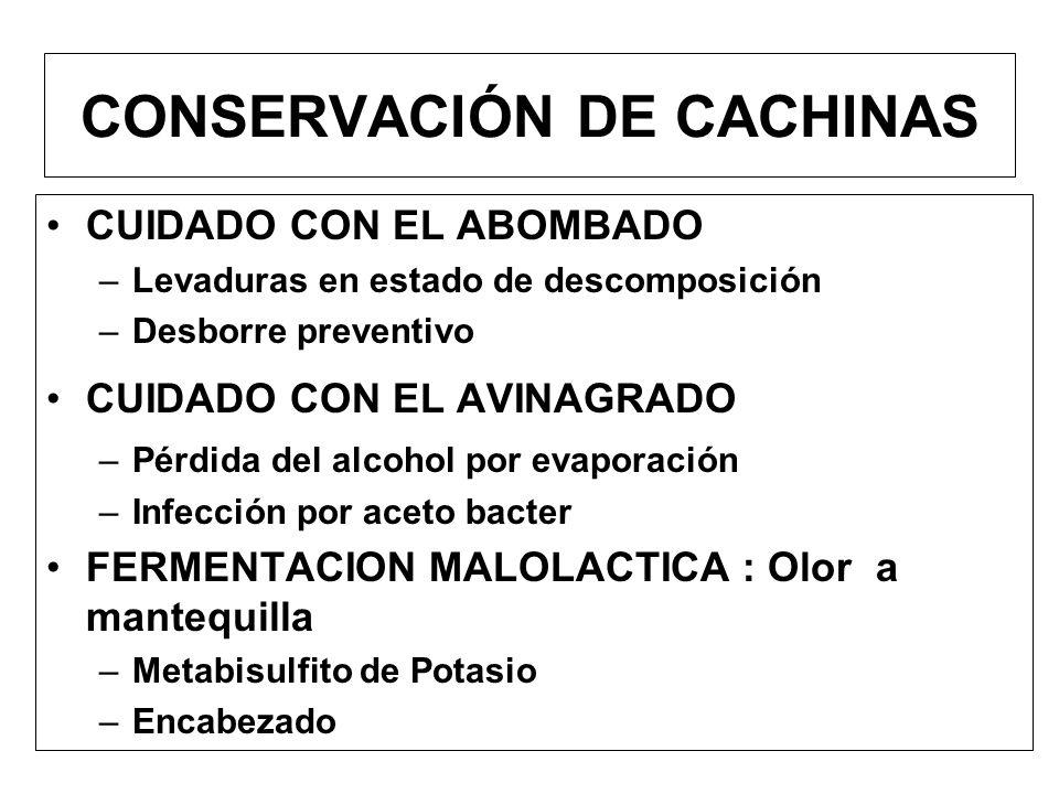 CONSERVACIÓN DE CACHINAS