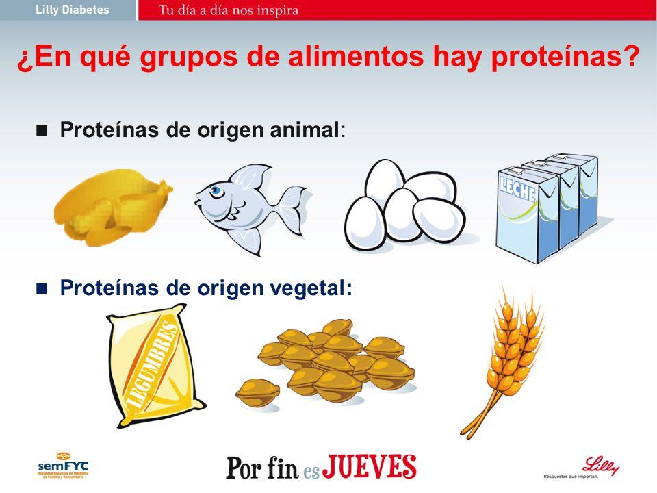 ¿En qué grupos de alimentos hay proteínas