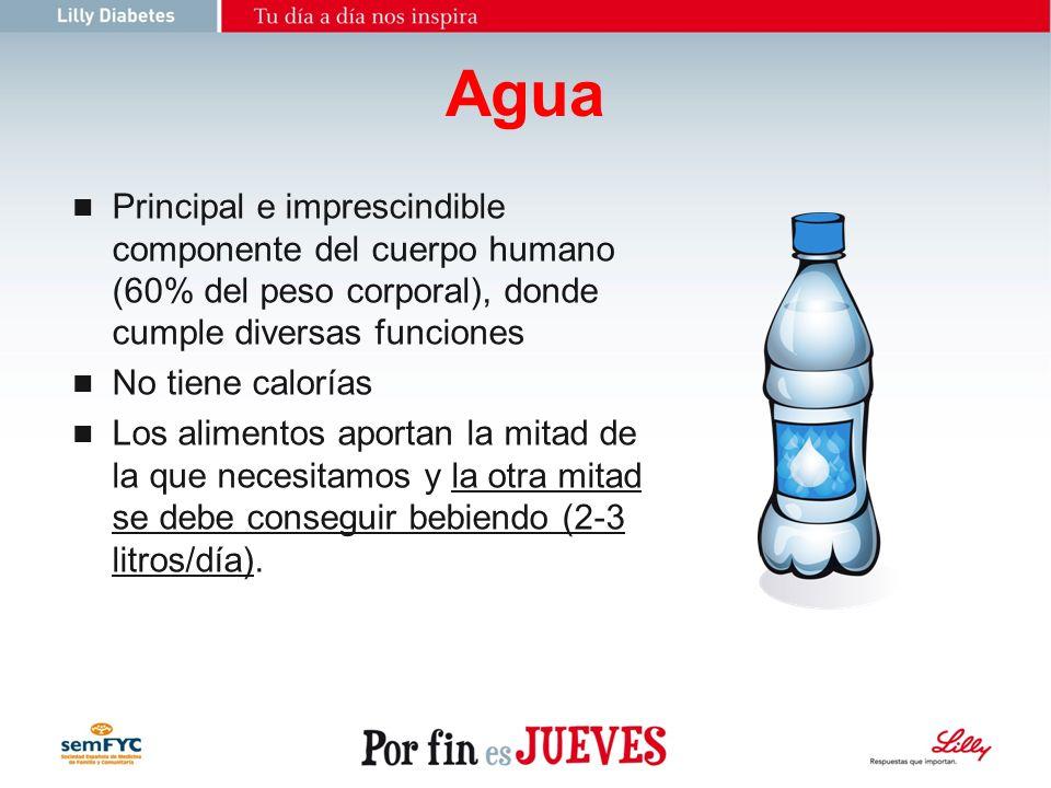 23/03/2017 Agua. Principal e imprescindible componente del cuerpo humano (60% del peso corporal), donde cumple diversas funciones.