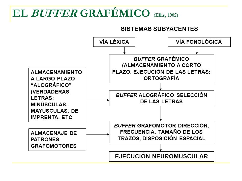 EL BUFFER GRAFÉMICO (Ellis, 1982)