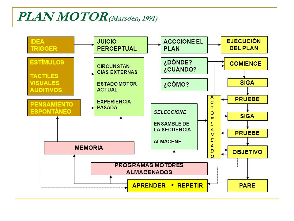 PROGRAMAS MOTORES ALMACENADOS