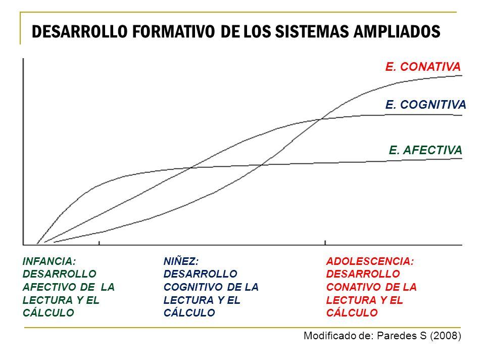 DESARROLLO FORMATIVO DE LOS SISTEMAS AMPLIADOS