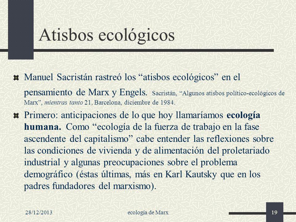 Atisbos ecológicos