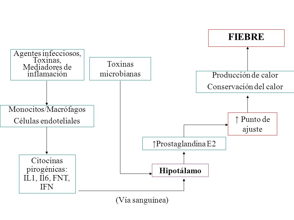 FIEBRE Agentes infecciosos, Toxinas, Mediadores de inflamación