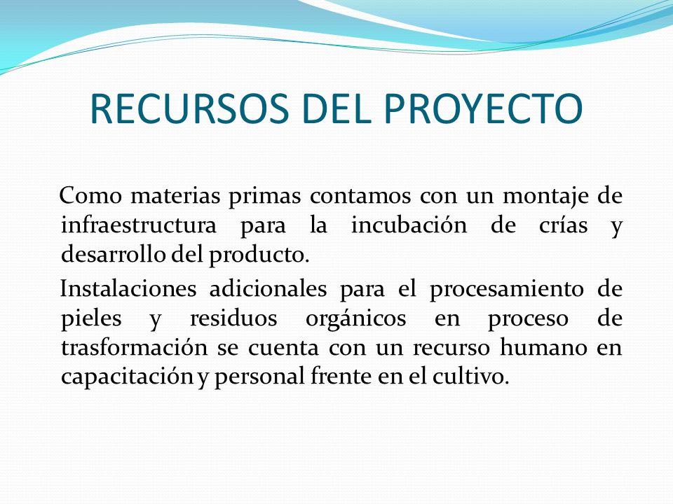 RECURSOS DEL PROYECTO