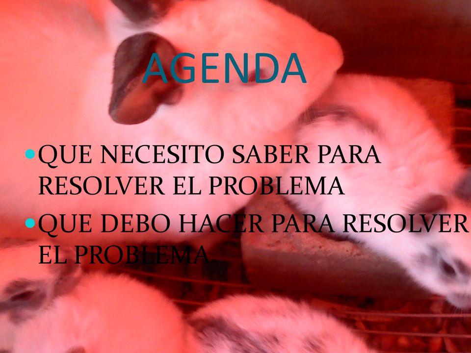 AGENDA QUE NECESITO SABER PARA RESOLVER EL PROBLEMA