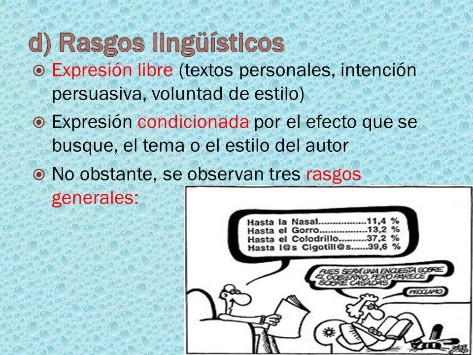 d) Rasgos lingüísticos