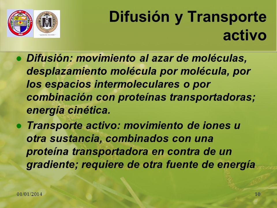 Difusión y Transporte activo