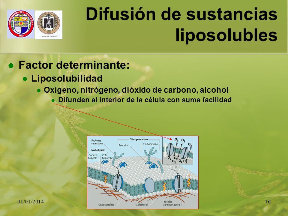 Difusión de sustancias liposolubles
