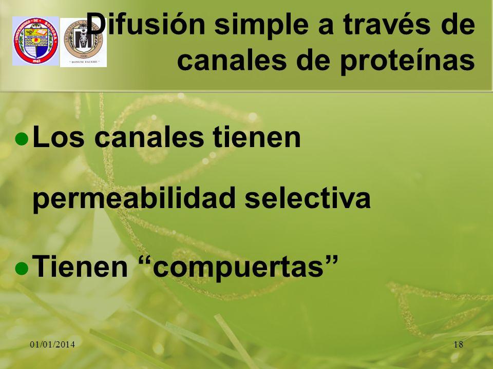 Difusión simple a través de canales de proteínas