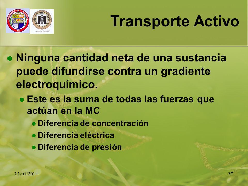 Transporte Activo Ninguna cantidad neta de una sustancia puede difundirse contra un gradiente electroquímico.