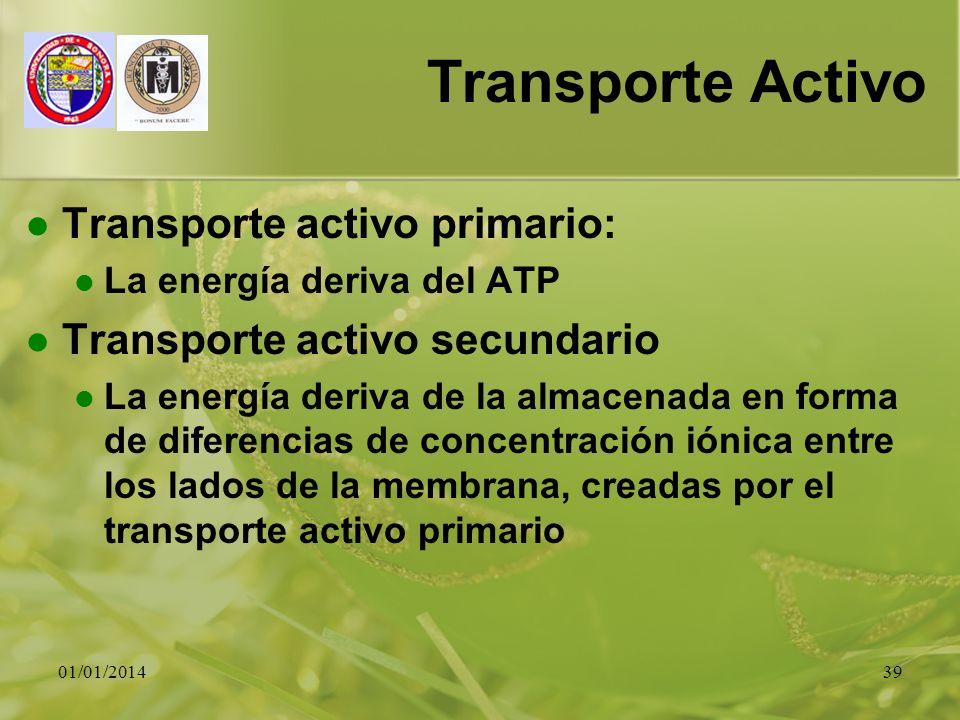 Transporte Activo Transporte activo primario: