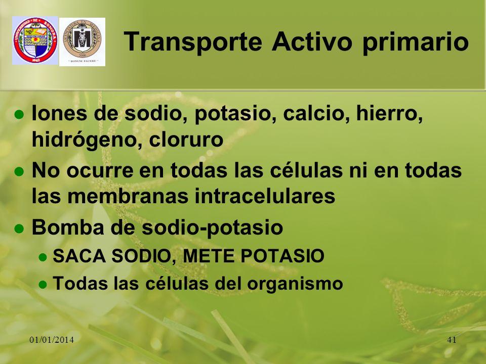 Transporte Activo primario