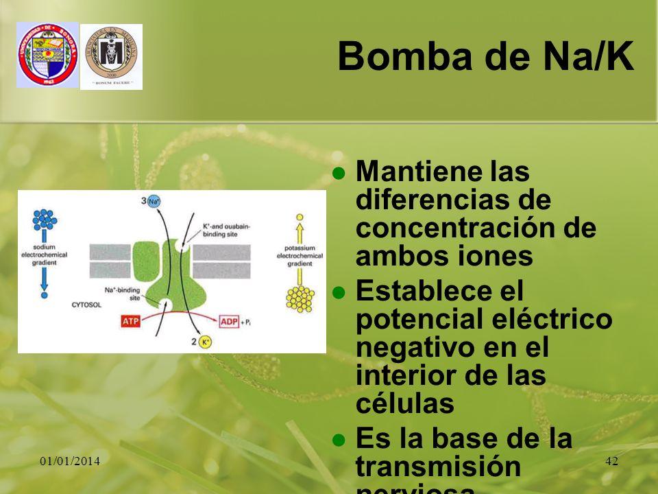 Bomba de Na/K Mantiene las diferencias de concentración de ambos iones