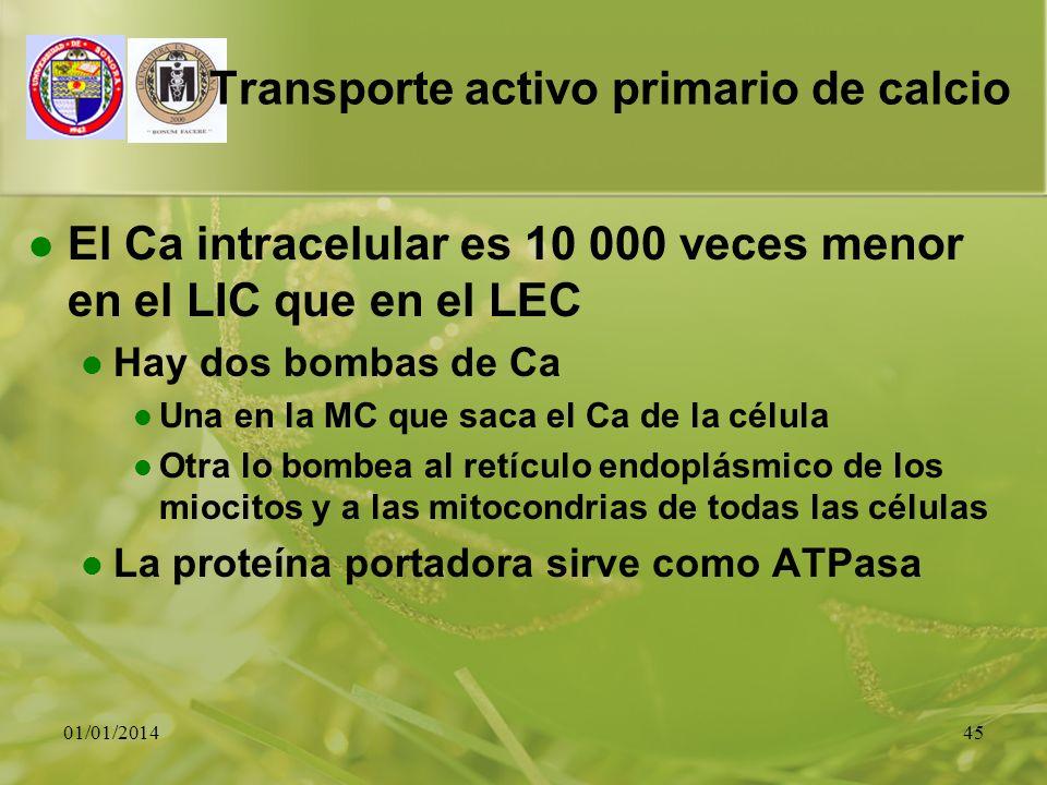 Transporte activo primario de calcio