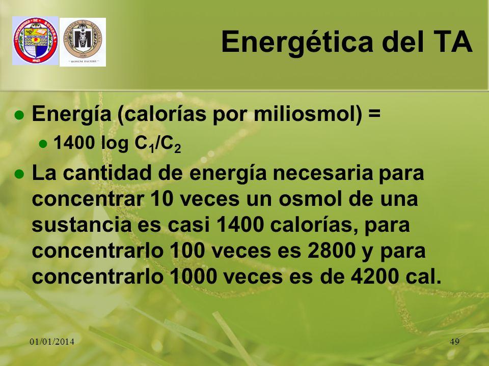 Energética del TA Energía (calorías por miliosmol) =
