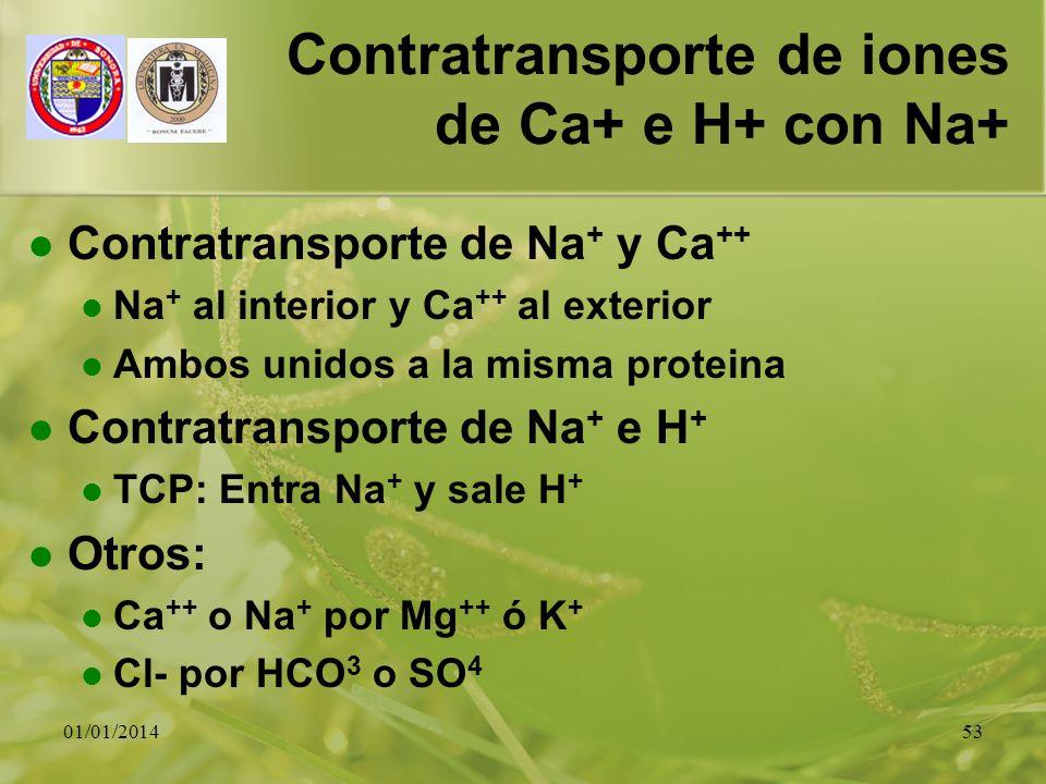 Contratransporte de iones de Ca+ e H+ con Na+