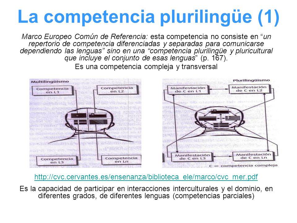 La competencia plurilingüe (1)