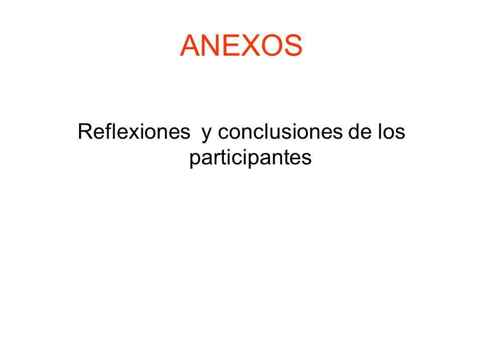 Reflexiones y conclusiones de los participantes