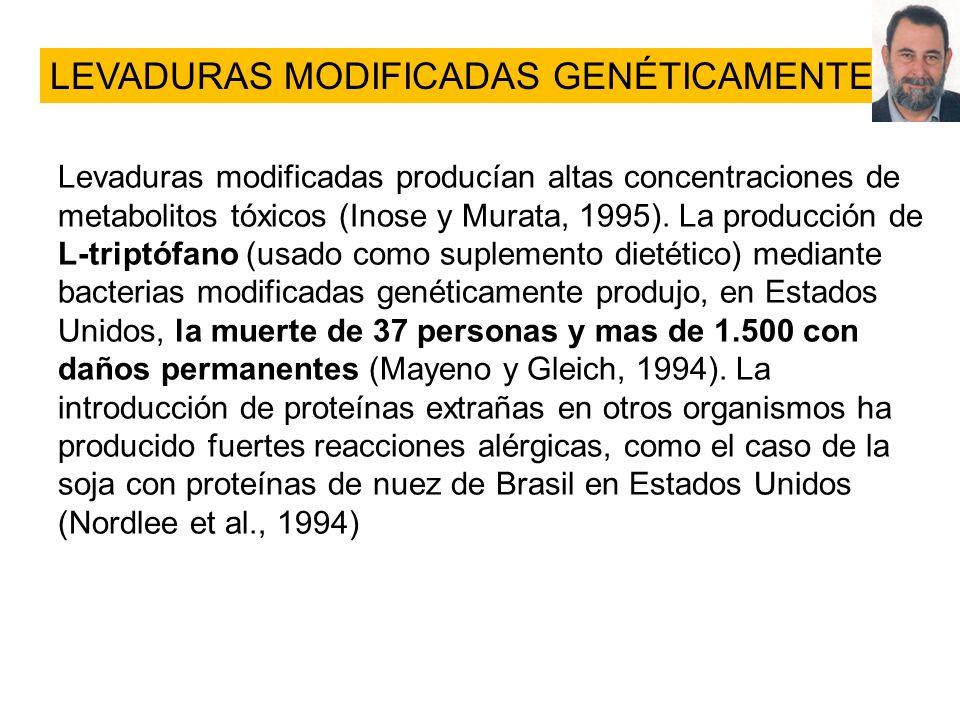 LEVADURAS MODIFICADAS GENÉTICAMENTE