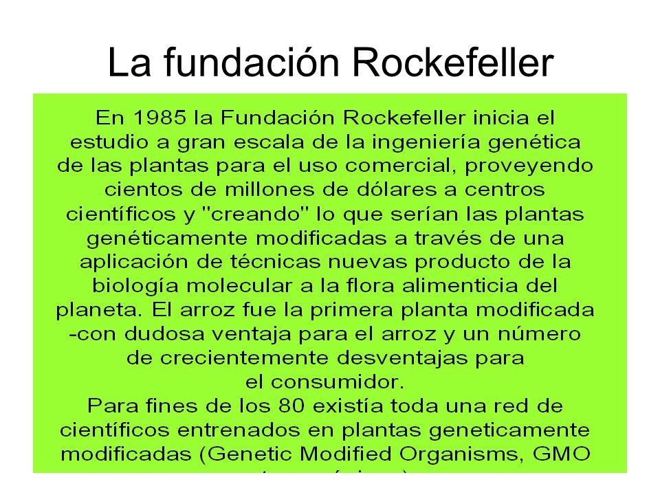 La fundación Rockefeller